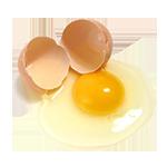 yellow-egg